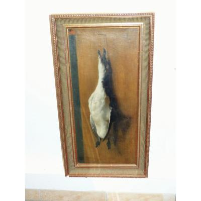 Oil On Canvas Circa XIX Eme Volatile Sea Bird 19 Century Hst Game Hunting Bird Watching