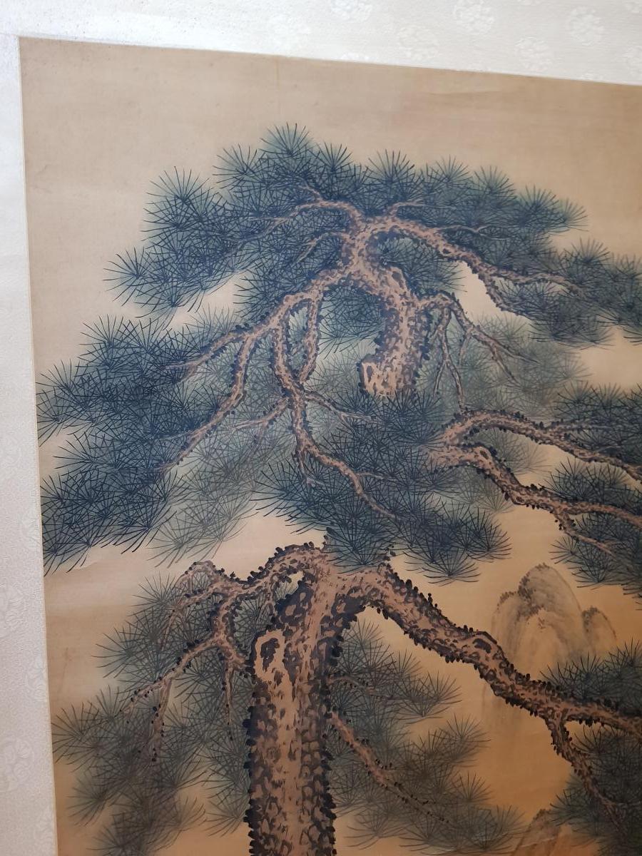 Grande Peinture Chinoise Ou Japonaise En Rouleau Le Grand Pin Majestueux-photo-1