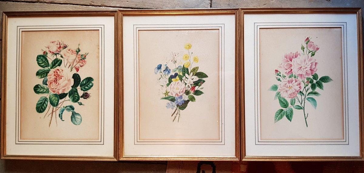 Lot De 3 Aquarelles Botaniques Signées  Bouquets De Fleurs Et Roses-photo-2
