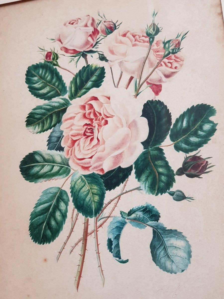 Lot De 3 Aquarelles Botaniques Signées  Bouquets De Fleurs Et Roses-photo-4