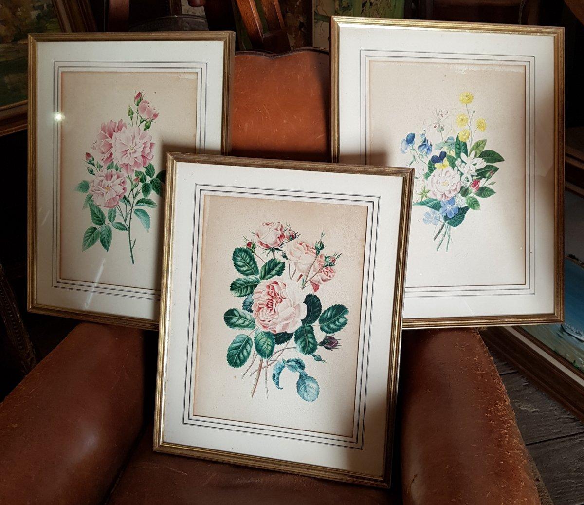 Lot De 3 Aquarelles Botaniques Signées  Bouquets De Fleurs Et Roses