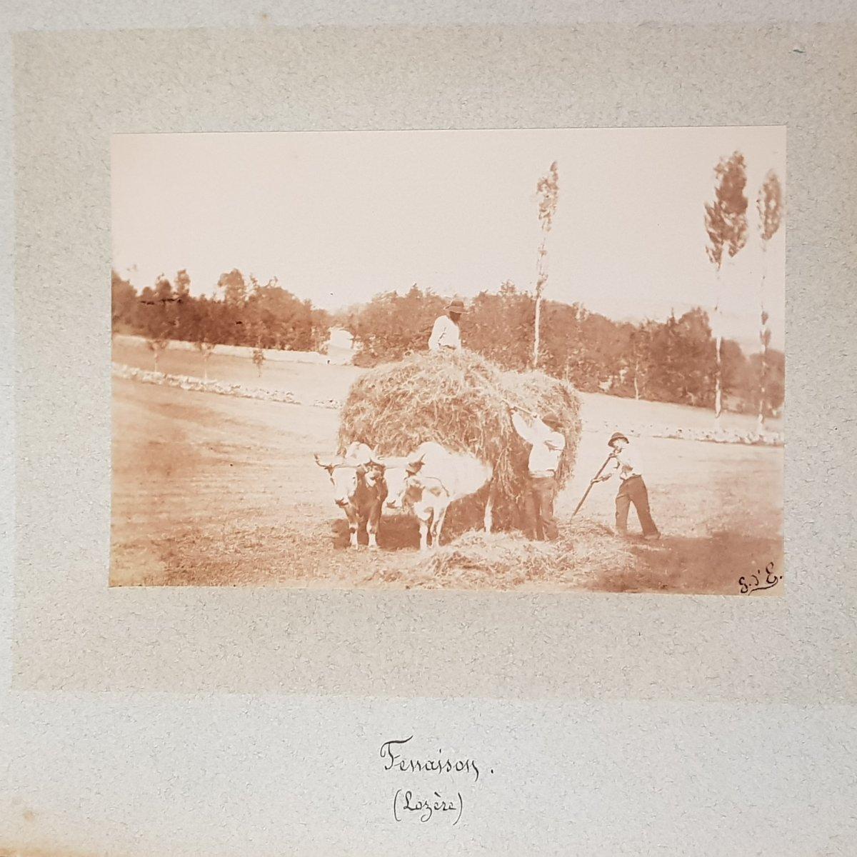"""Recueil de photographies """"par monts et par vaux"""" Lozère,Garabit,Allier et Langeais-photo-7"""