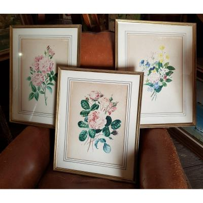 Lot Of 3 Botanical Watercolors Signed Bouquets Of Flowers And Roses