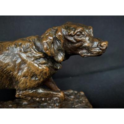 Bronze De Mene Spaniel Dog