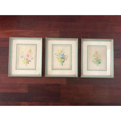 Ensemble De Trois Aquarelles De Fleurs
