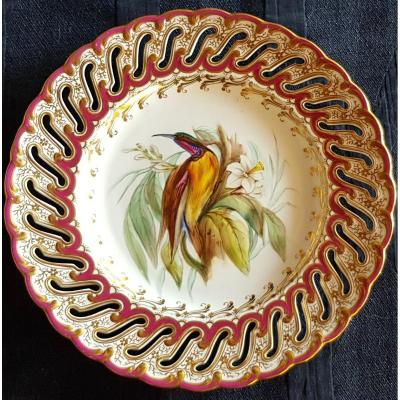 Assiette Anglaise XIX S Porcelaine Ajourée Et Peinte à  La Main Oiseau Du Paradis
