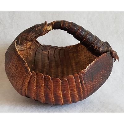 Small Armadillo Basket Old Taxidermy