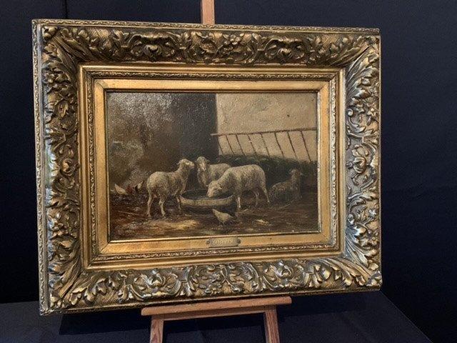 Fortier. Moutons  à La Bergerie. XIX ÈME.