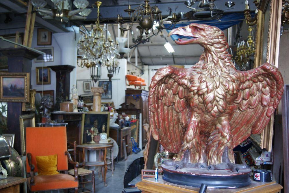 aigle-imperiale-diapo-1