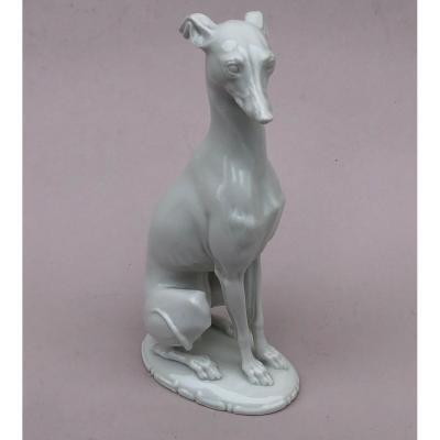Greyhound Porcelain.