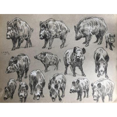 Georges Frederic Rötig, Dessin Au Crayon, étude De Sangliers