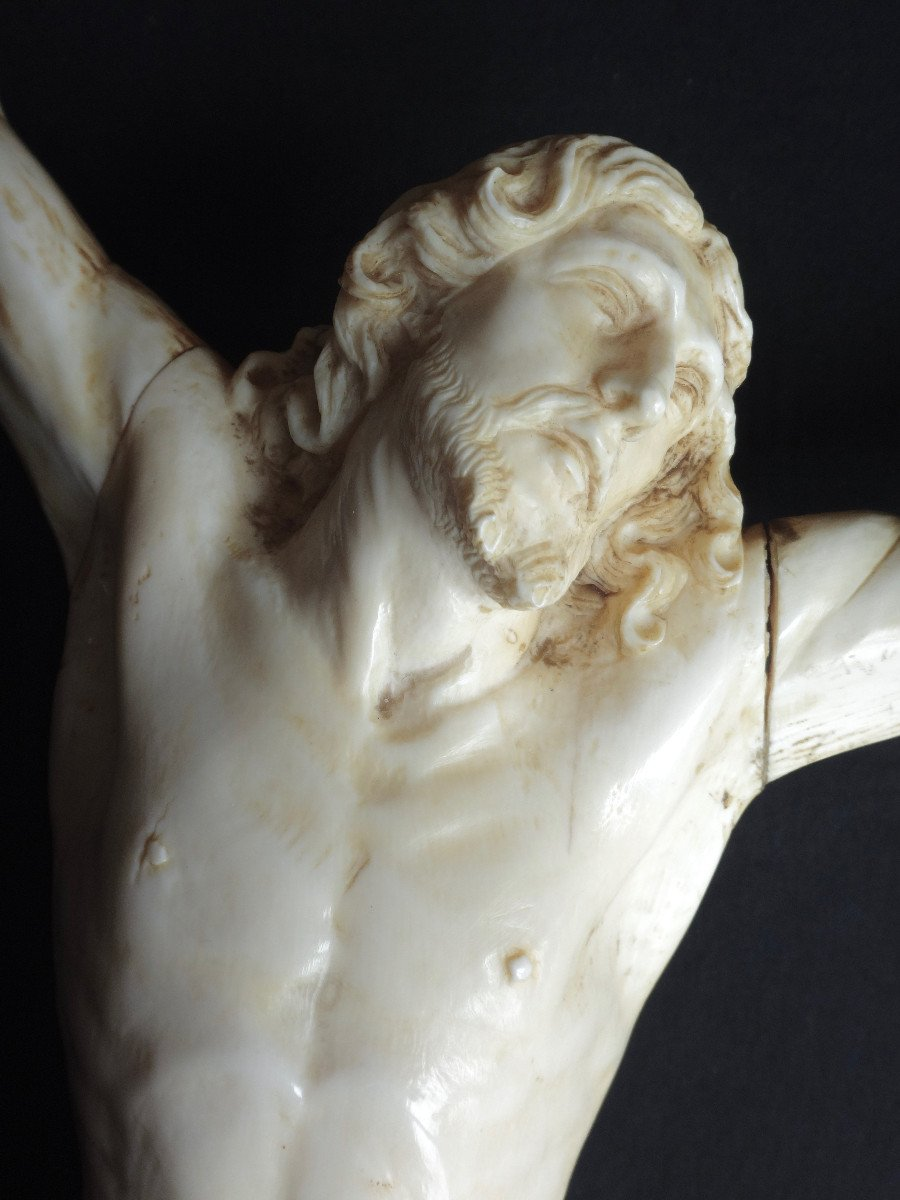 Large Christ In Ivory Carved In The Louis XIV Style, 19th Century -photo-3