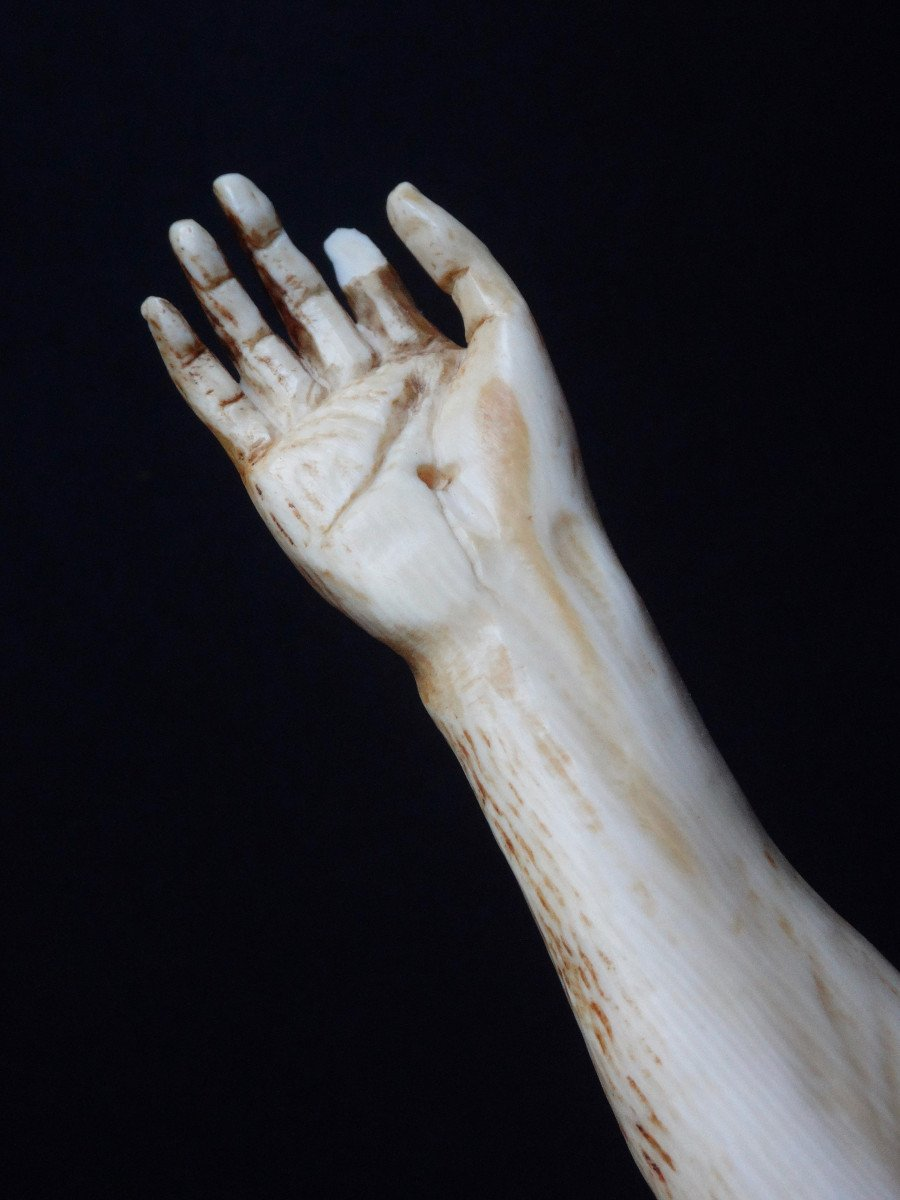 Large Christ In Ivory Carved In The Louis XIV Style, 19th Century -photo-5