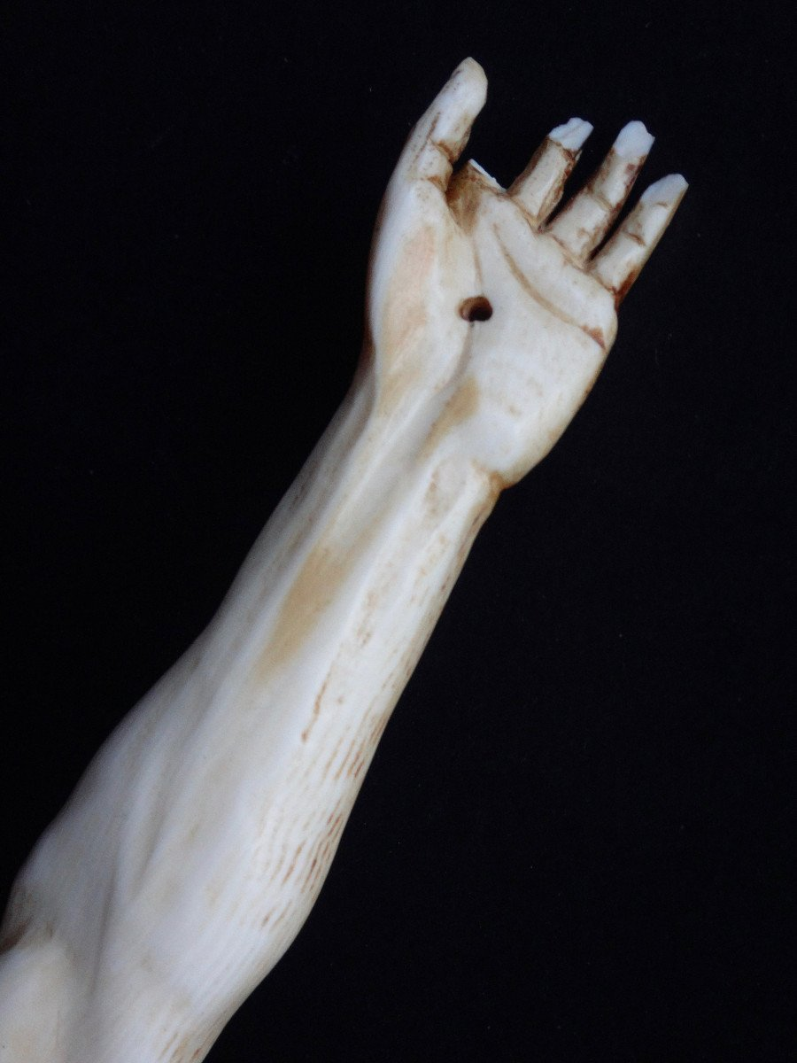 Large Christ In Ivory Carved In The Louis XIV Style, 19th Century -photo-7