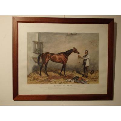 """Gravure couleur """"Etoile du nord"""" 1858"""