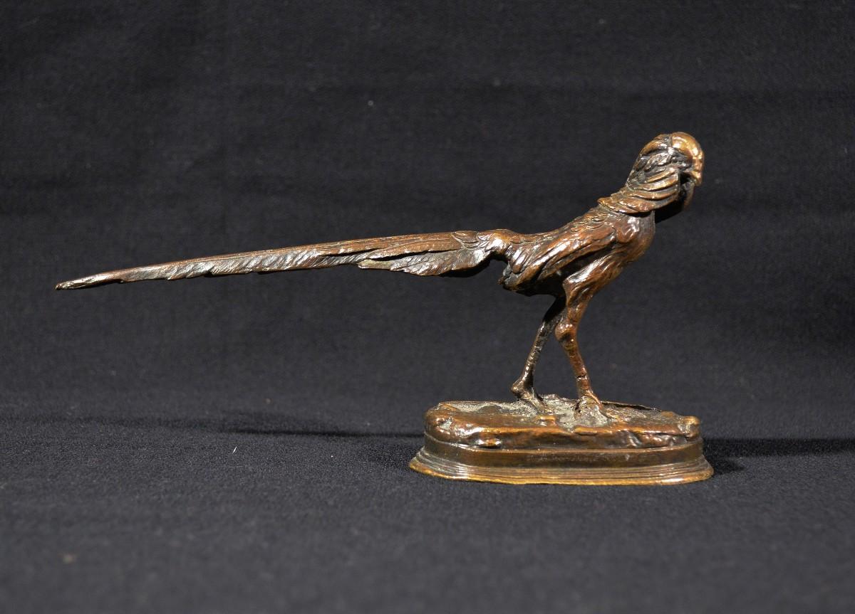 Faisan Doré En Bronze XIXè-photo-2