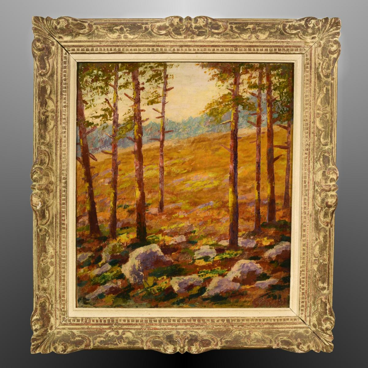 Impressionist Landscape Undergrowth Of Pines Signed Gross