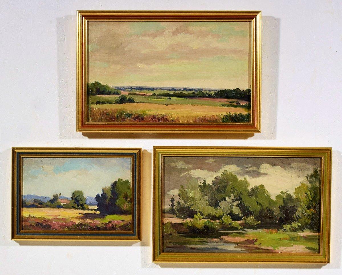 Trois paysages de Sologne par Maurice Golleau (1897-1970)-photo-1