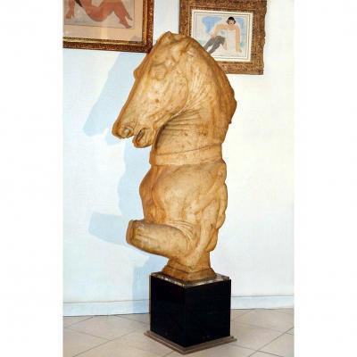 Grande Sculpture En Résine XXème Cheval