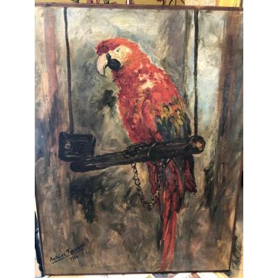 Oil On Canvas The Parrot