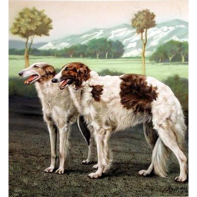 Dog Painting: Russian Borzoi By Gianni (active In 1930-1940s)