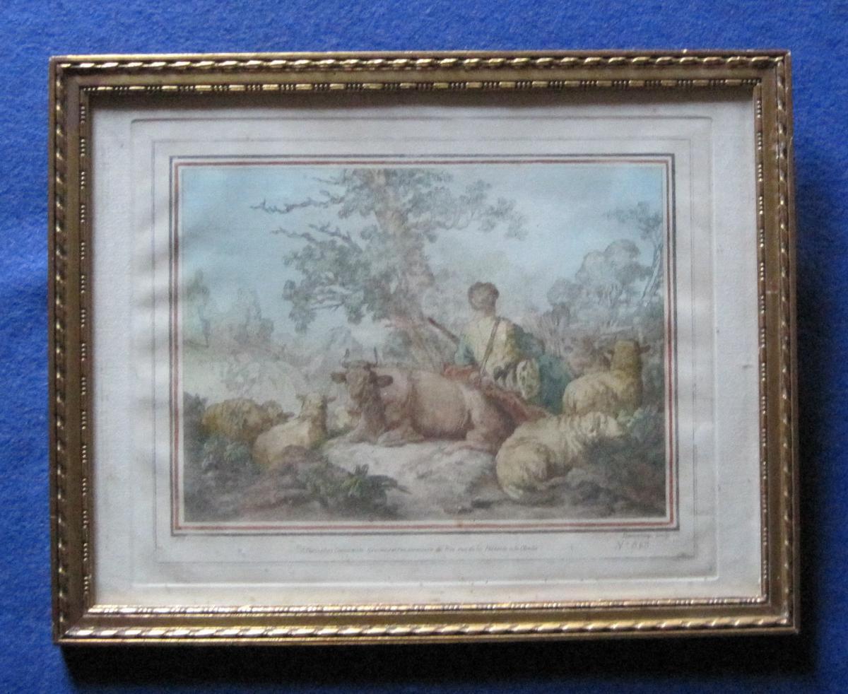 Gravure : Vacher-berger et son troupeau. XVIIIe s.
