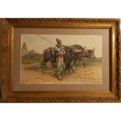 Watercolor 19th Century Signed - G. Raggio Roma 187