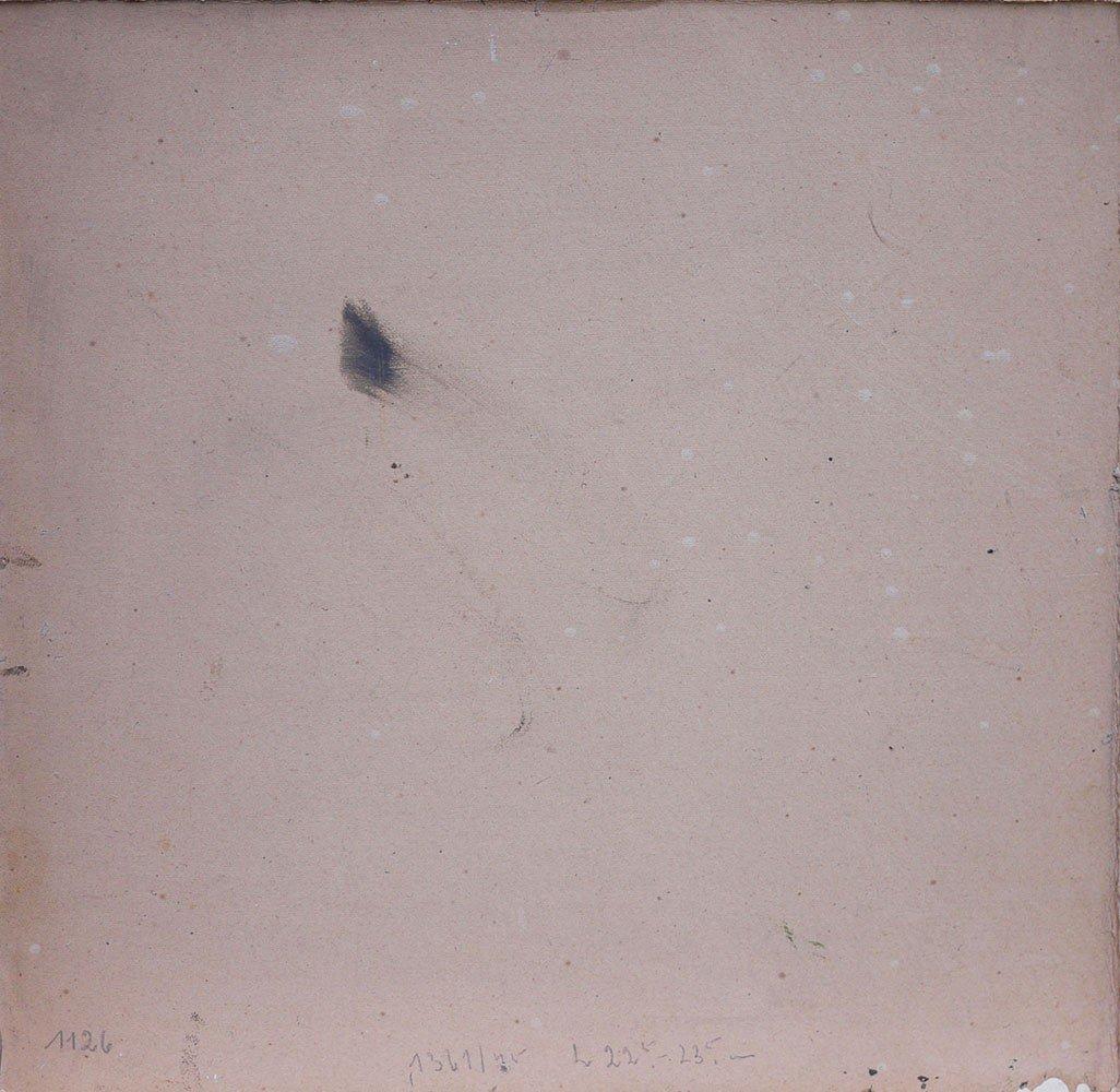 Tableau Nature Morte Champignons Amanita Muscaria - Carl Braml-photo-8