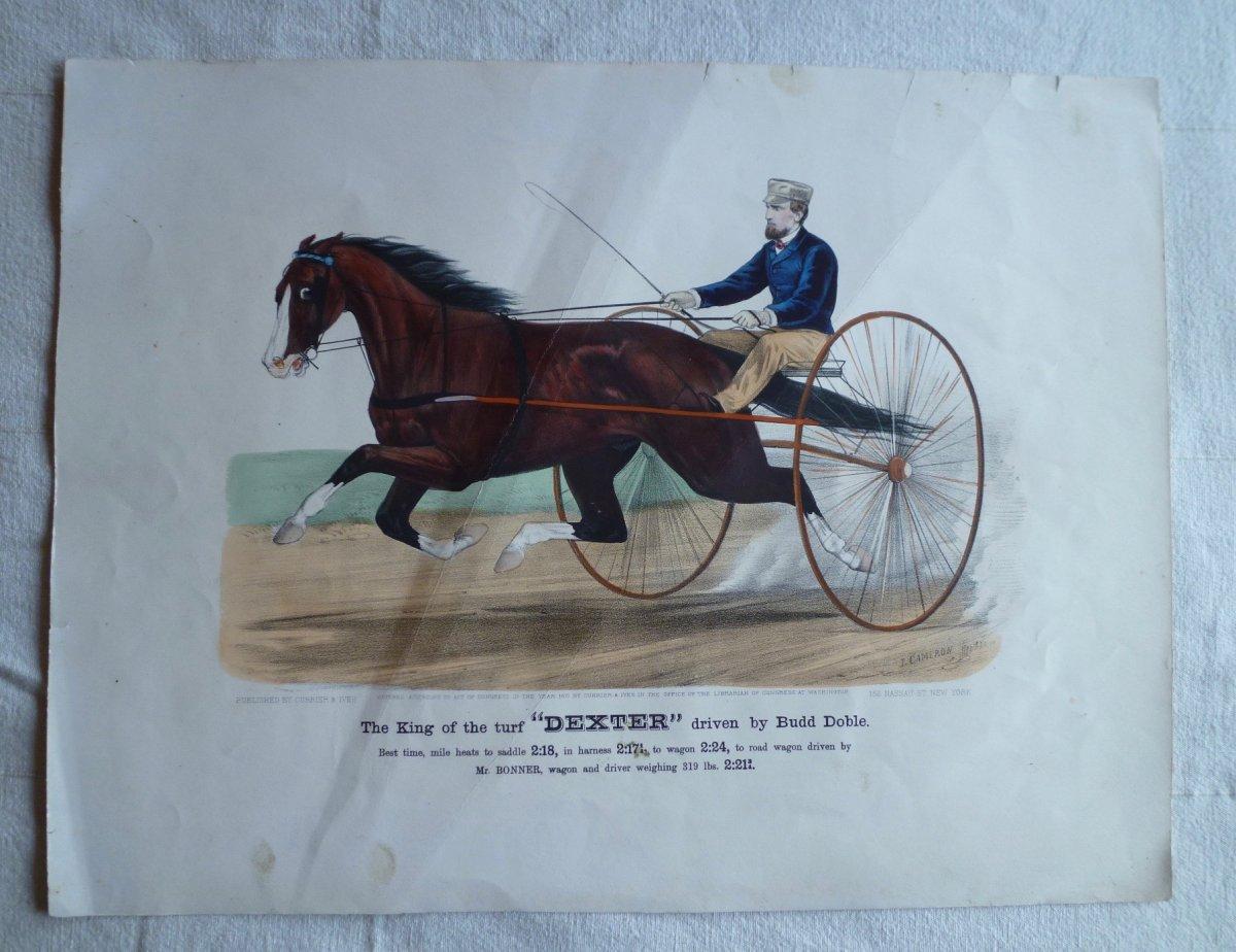 Currier And Ives, Lithographie équestre, Dexter, 19ème.