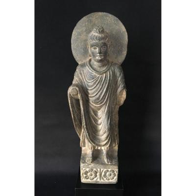 BOUDDHA auréolé debout. Schiste gris. Art du GANDHARA, sculpture gréco-bouddhique antique. Statue Asie