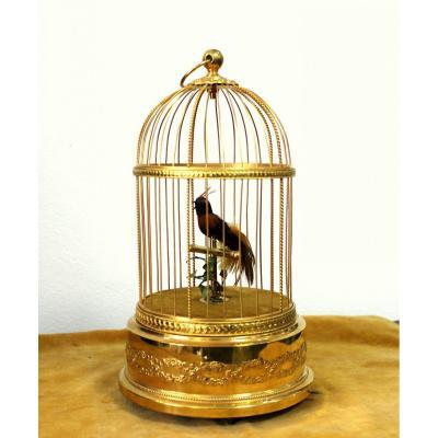 Jouer Cage avec un oiseau en bronze doré France 1920