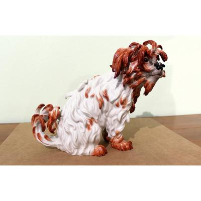 Meissen Porcelain Large  Statuette Of Bologna Dog First Half Of The 20th Century