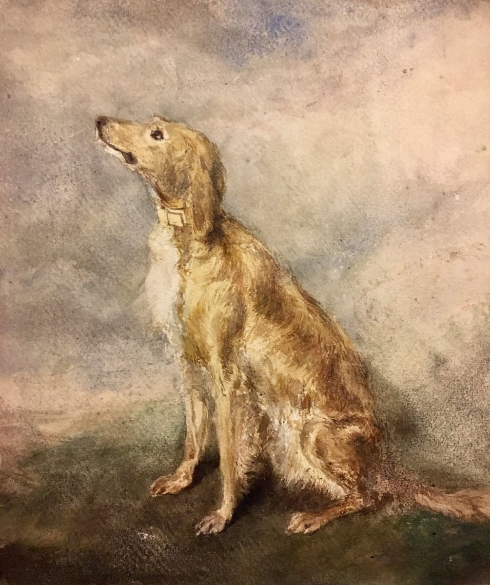 Hippolyte Lalaisse (1812-1884), The Greyhound And Study Of Watercolors