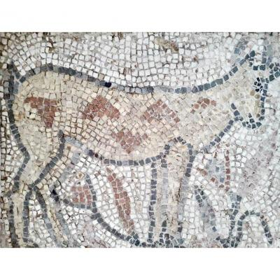 Animal Mosaic Carthaginian Iith Century