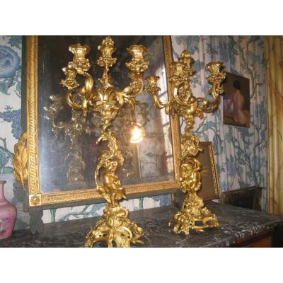 Candelabra Pair Of Gilt Bronze