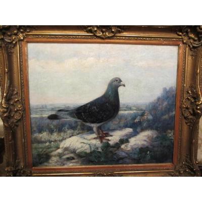 Huile Sur Panneau : Pigeon Dans Un Paysage.