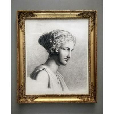 Portrait Drawing Head Of Aphrodite By Kaufmann.