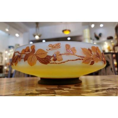 Gallé Art Nouveau Hazelnut Cup