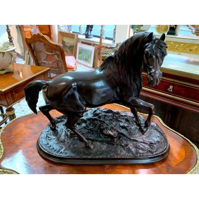 Animal Bronze