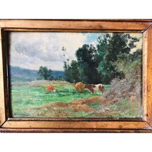 Édouard Hamman vaches au pâturage.
