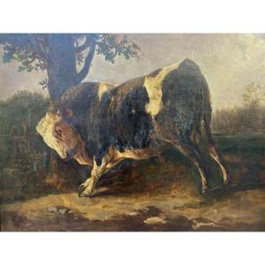 Bull Oil Rubbing Against A Tree After Brascassat Signed