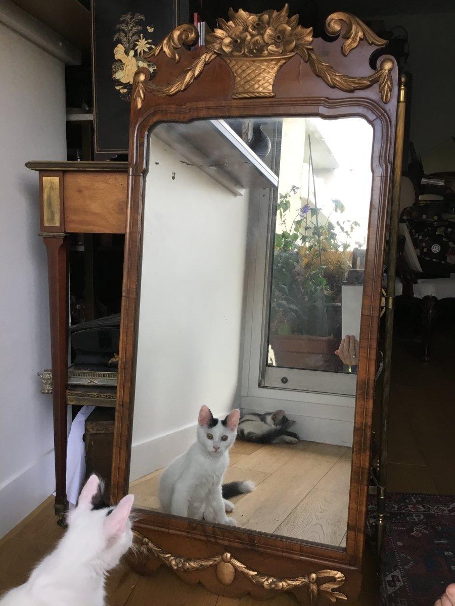 Mirror An Mahogany, England, Nineteenth