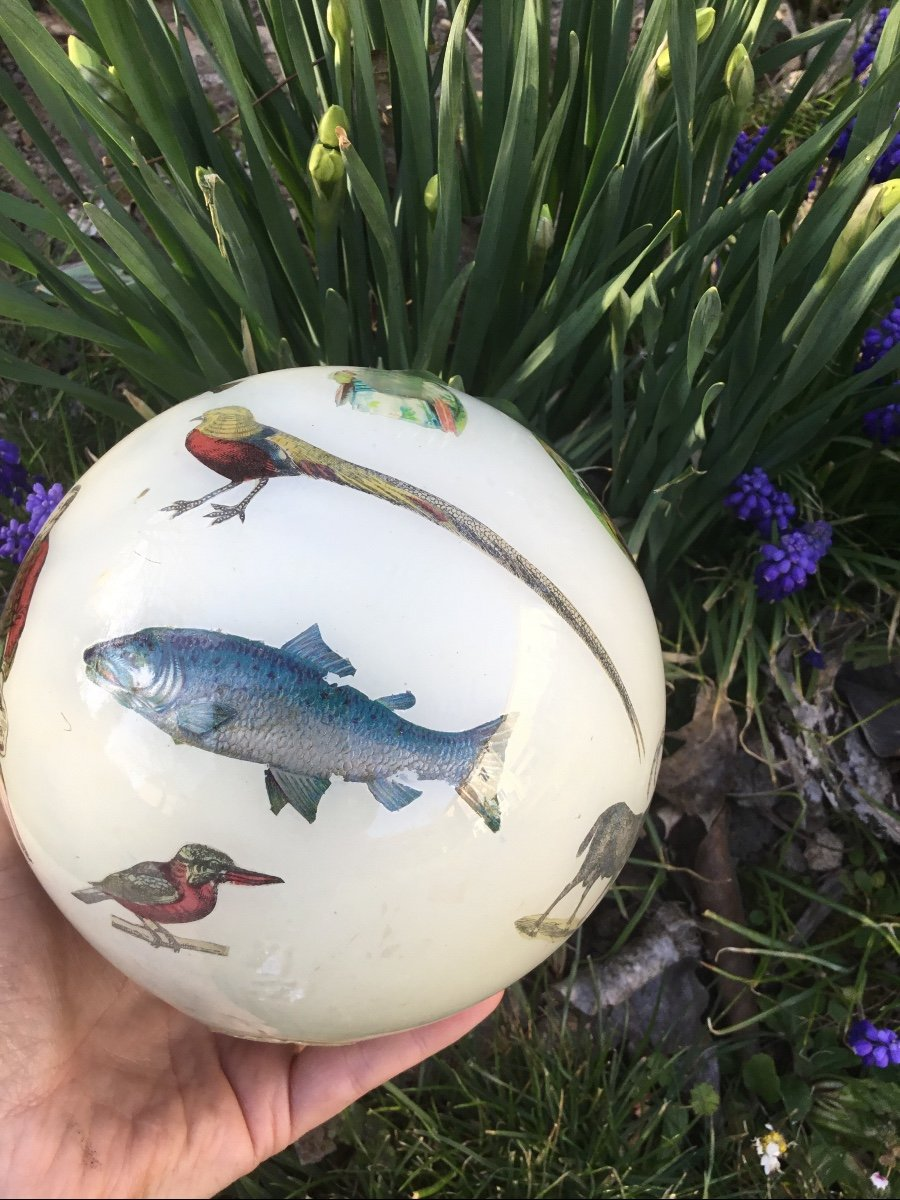 Amusante Boule à Perruque , XIXème-photo-8