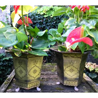 Pair Of Cache Pots In Lacquered Tin Restoration Period