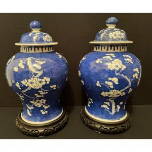 Chine pour Indochine Paire De Vases Couverts à Décor De Prunus Fin XIXème