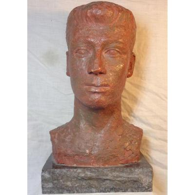 Bust Of A Terracotta Ephebe