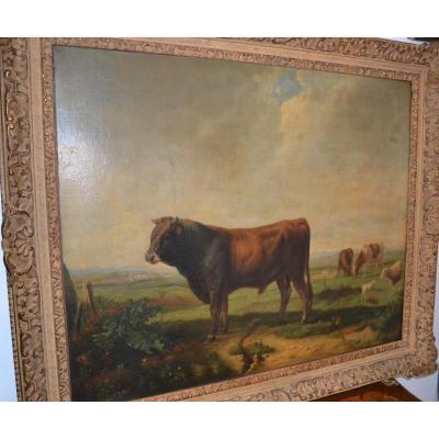 Huile Sur Toile Taureau Vaches Moutons Brascassat (1804-1867)