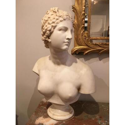 Buste de Venus de Medicis en marbre Époque 19ème