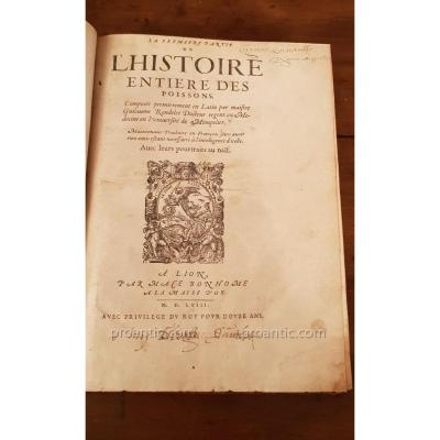 "Ancient Book ""whole History Of Fish By Guillaume Rondelet 1556"
