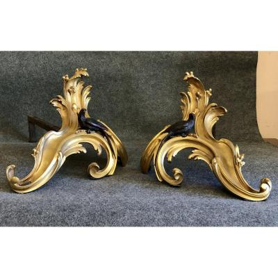 Pair Of Bronze Andirons, Vienna, 19th Century